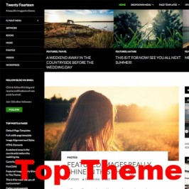 It took a while, but Twenty Fourteen is now one of the Top WordPress Themes