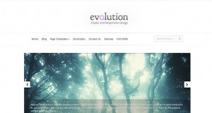 elegant-themes-evolution