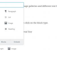 Insert Format Types Gutenberg
